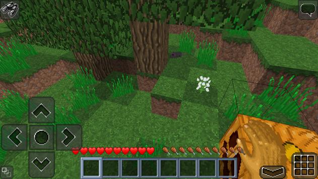 MultiCraft Classic (OLD) apk screenshot