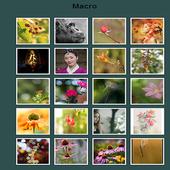 Macroscopic View icon
