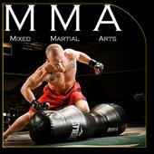 MMA Fighting Techniques icon