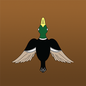 DuckLaunch icon