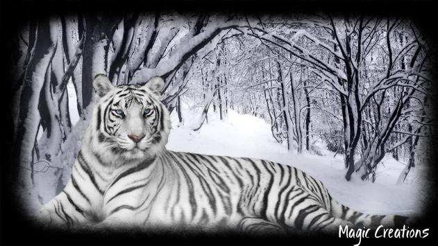 White Tiger Wallpaper apk screenshot