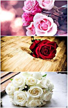 خلفيات مملكة الزهور نسخة جديدة apk screenshot