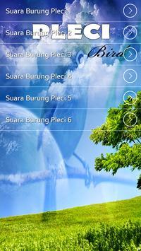 Masteran Burung Pleci Gacor Terbaik apk screenshot
