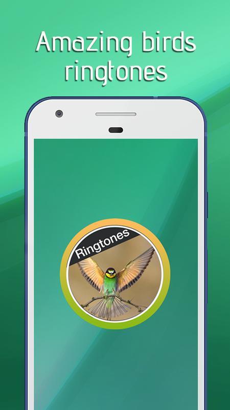 bird singing ringtone free download mp3