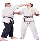 Martial Technique icon