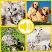 Baby Animal Sound icon