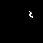 Saphira Equilibrium VR icon