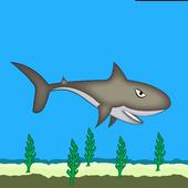 샤크팡팡 icon