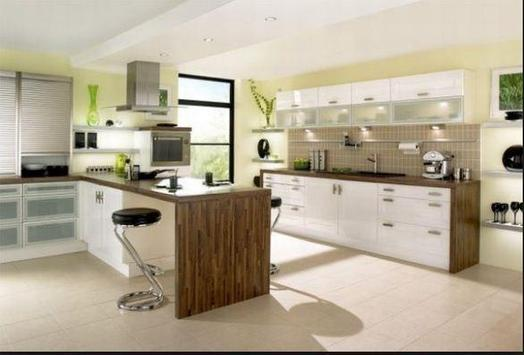 Modern Kitchen Ideas screenshot 3