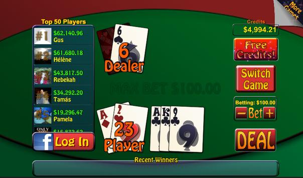 Video Poker & Blackjack Casino screenshot 14