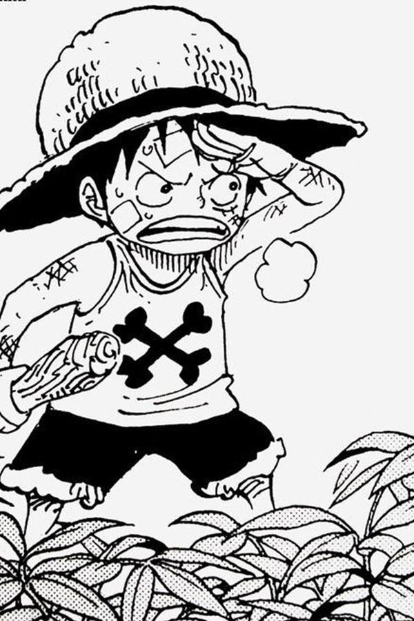 One Luffy Piece Wallpaper Hd For Android Apk Download