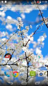 White Beauty Love Flower LWP screenshot 3