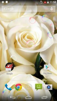 White Beauty Love Flower LWP poster