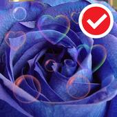 Blue Love Rose Flower LWP icon