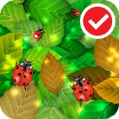 Ladybug Free Live Wallpaper icon