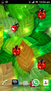 Ladybug Free Live Wallpaper poster