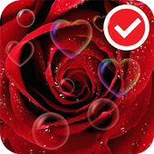 Red Rose Love Flower Free LWP icon