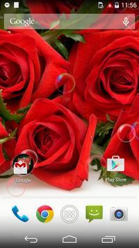Red Rose Love Flower Free LWP apk screenshot
