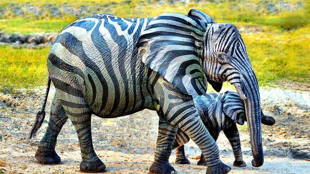 Zebra style. Live wallpapers apk screenshot