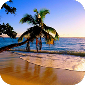 Paradise beach Live wallpapers icon