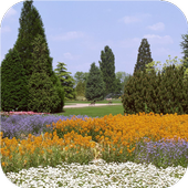 Spring panorama LiveWallpapers icon