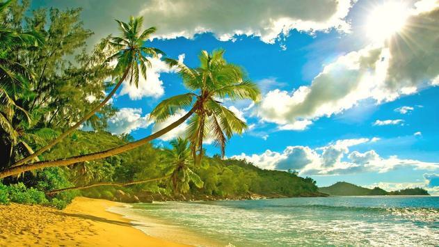Amazing beach. Live wallpapers apk screenshot