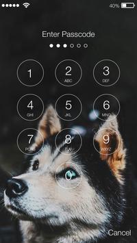 Siberian Husky Dog Lock & AppLock Security screenshot 1