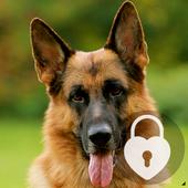 German Shepherd Dog AppLock Security icon
