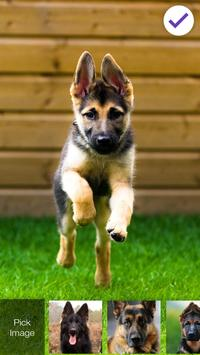 German Shepherd Dog AppLock Security screenshot 2