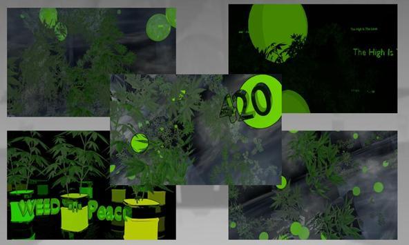 Grow Your Talking Weed Plant apk screenshot