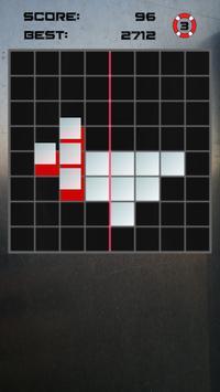 Symmetry Puzzle poster
