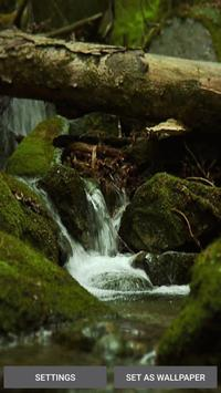 Nature Wallpaper with Sound apk screenshot