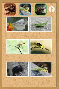 とびだす昆虫園-赤ちゃん・幼児・子供向け知育アプリ apk screenshot