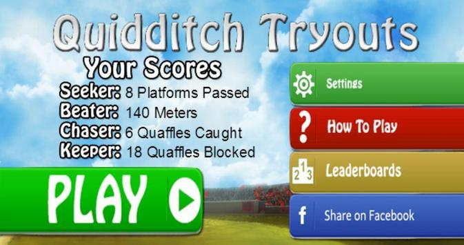 Quidditch Tryouts poster