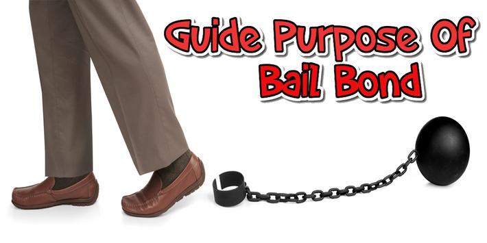 purpose of bail bond guide screenshot 1