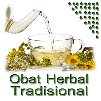 Obat Herbal Tradisional apk screenshot