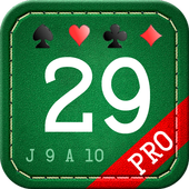 29 Card Game Pro icon