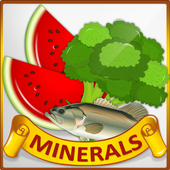 Minerals & Antioxidants Foods Diet sources Guide icon