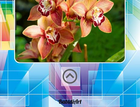 Orchid Gallery screenshot 2