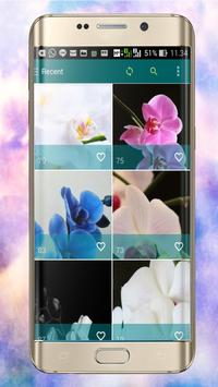 Orchid Wallpapers screenshot 1