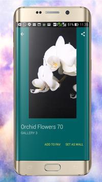 Orchid Wallpapers screenshot 9