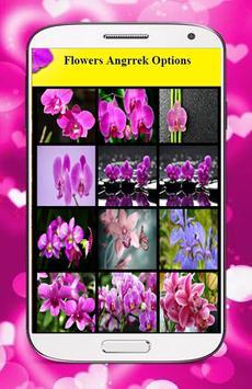 Orchid Flower Wallpaper poster
