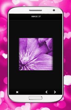 Orchid Flower Wallpaper screenshot 1