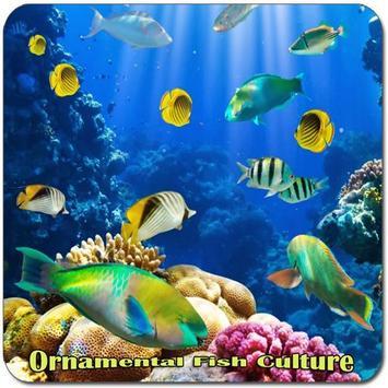 Ornamental Fish Culture apk screenshot