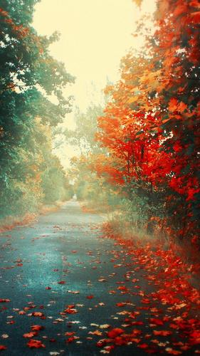 autumn live wallpaper for android apk download
