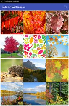 Autumn Wallpapers apk screenshot