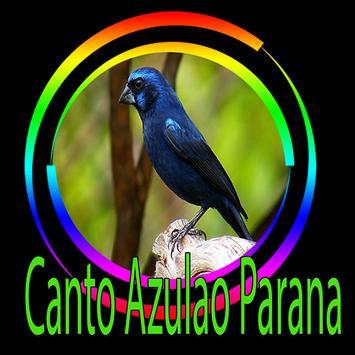 Azulão Canto Paraná Puro poster
