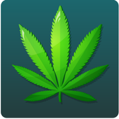 Find The Weed icon