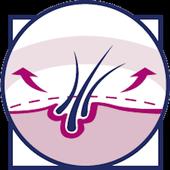 SkinMorph icon