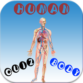 HUMAN BODY QUIZ icon